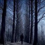 NELL 新曲『Green Nocturne』フルM/V動画