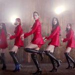 AOA 『Like a Cat』Dance Ver.(Short ver.)