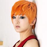 kpopdrama.info K-POP  delight3.jpg